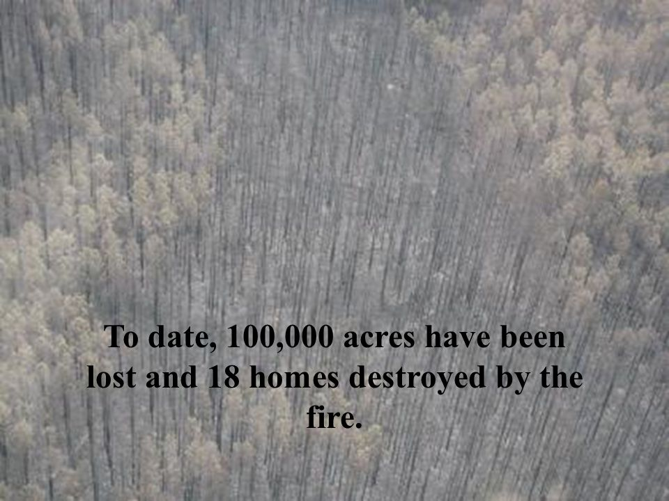 126 miles of fire lines and 1000 miles of firebreaks have been created to keep the fire from consuming the entire community.
