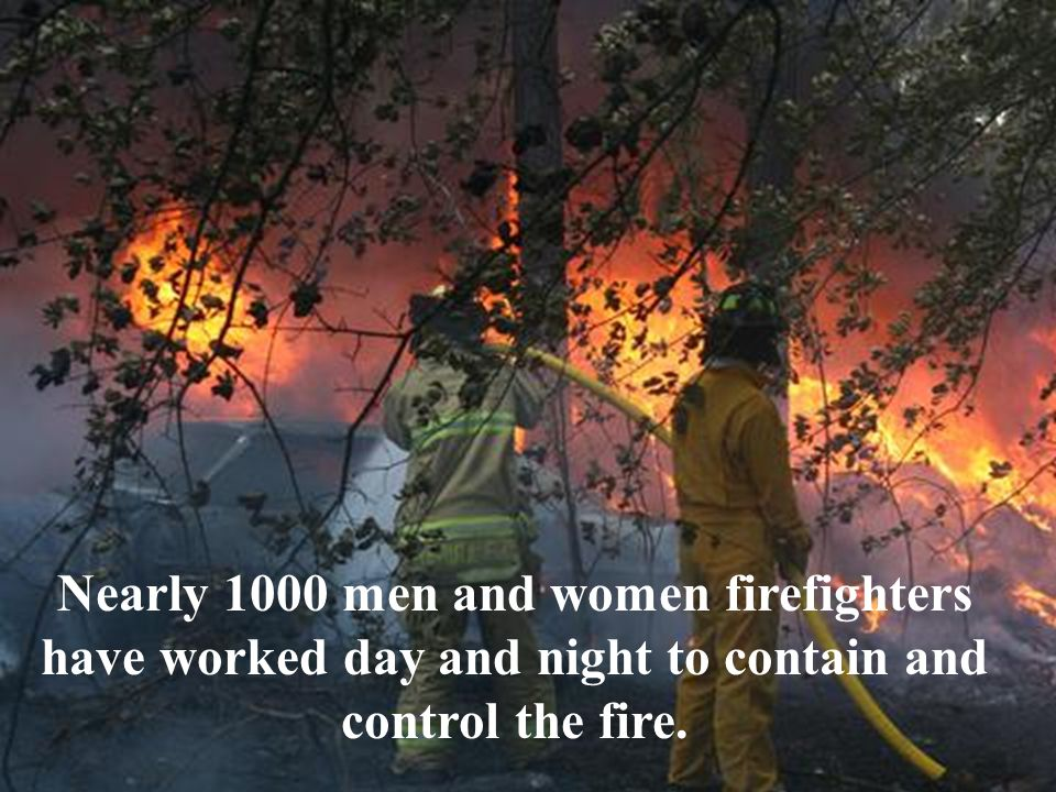 Nearly 1000 men and women firefighters have worked day and night to contain and control the fire.