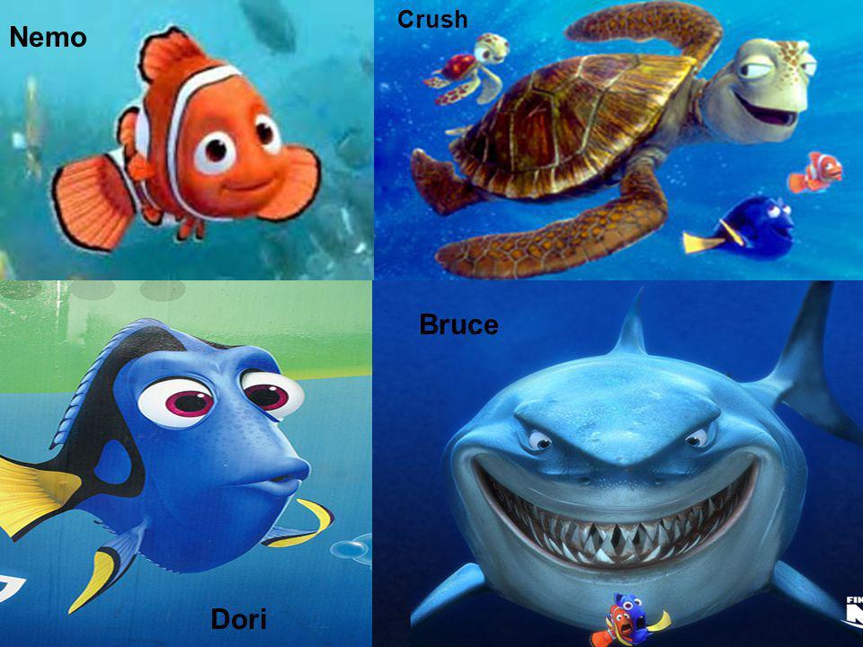 Nemo Dori Bruce Crush