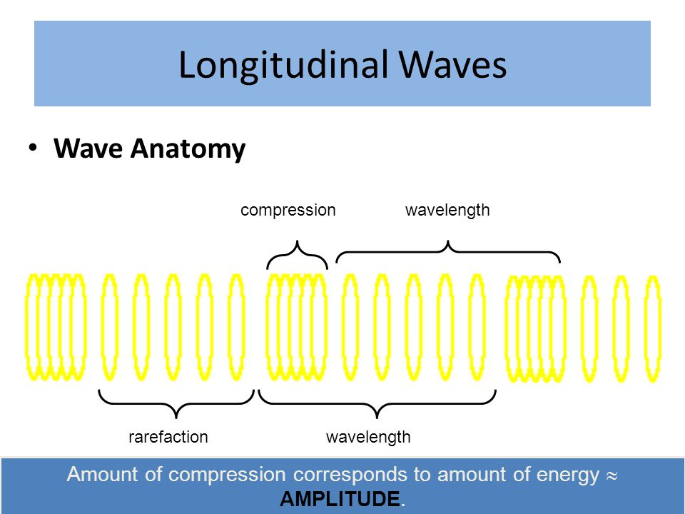 Longitudinal Waves Wave Anatomy rarefaction compression wavelength Amount of compression corresponds to amount of energy  AMPLITUDE.