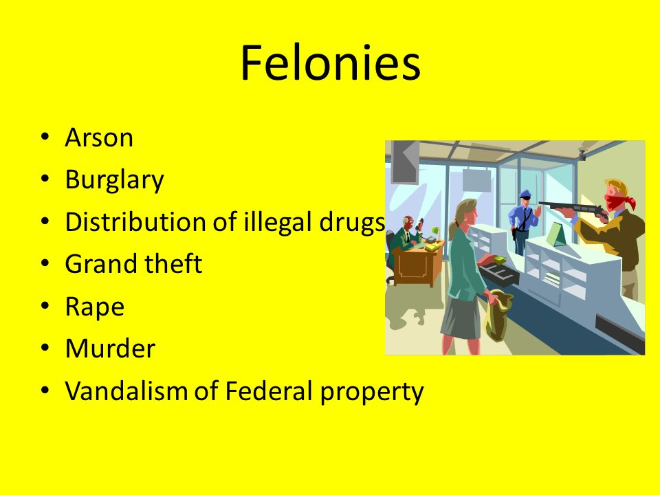 Felonies Arson Burglary Distribution of illegal drugs Grand theft Rape Murder Vandalism of Federal property