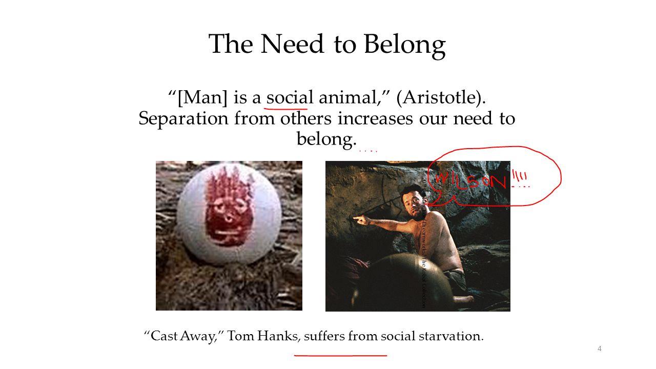 A.Aiding Survival 5 Social bonds boosted our ancestors' survival rates.