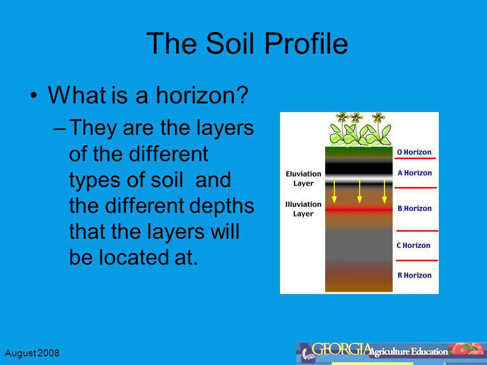 August 2008 The Soil Profile What is a horizon? –They are the layers of the different types of soil and the different depths that the layers will be l