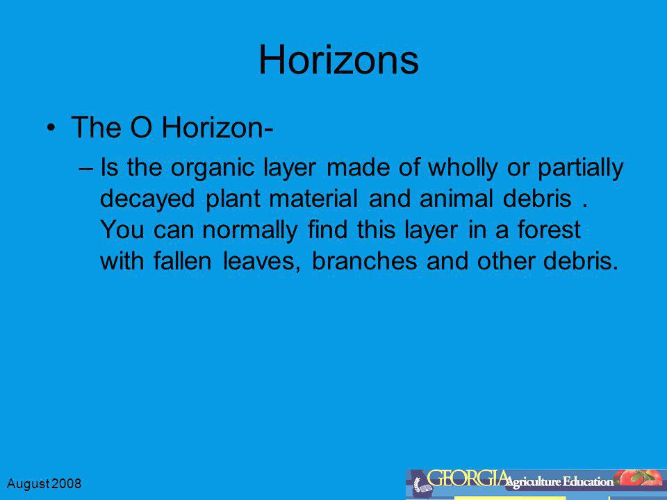 August 2008 Horizons The O Horizon- –Is the organic layer made of wholly or partially decayed plant material and animal debris. You can normally find