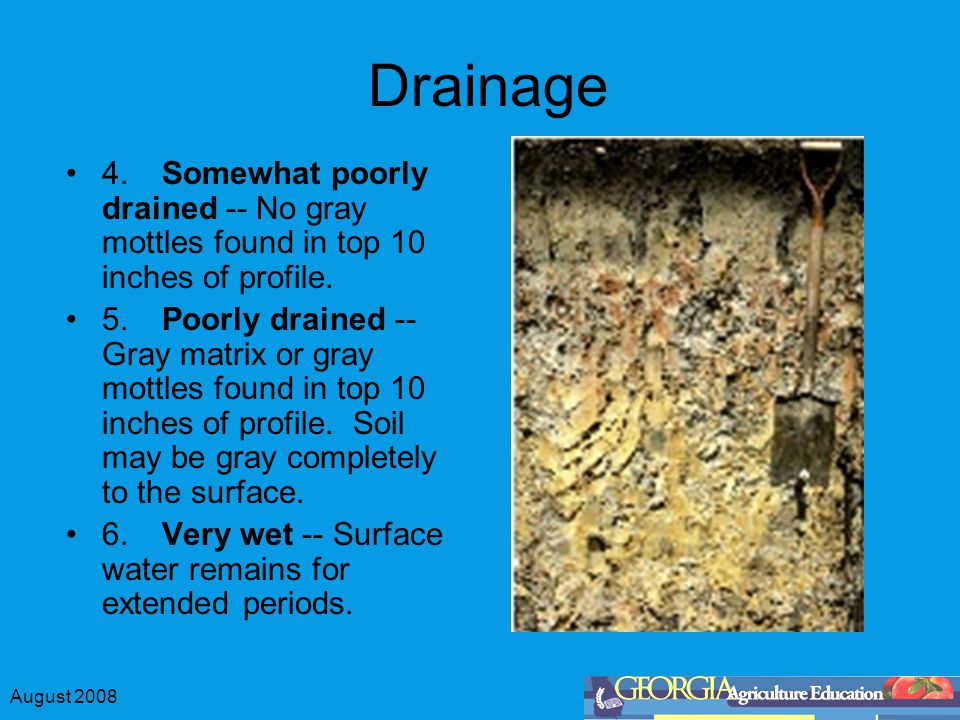 August 2008 Drainage 4.Somewhat poorly drained -- No gray mottles found in top 10 inches of profile.