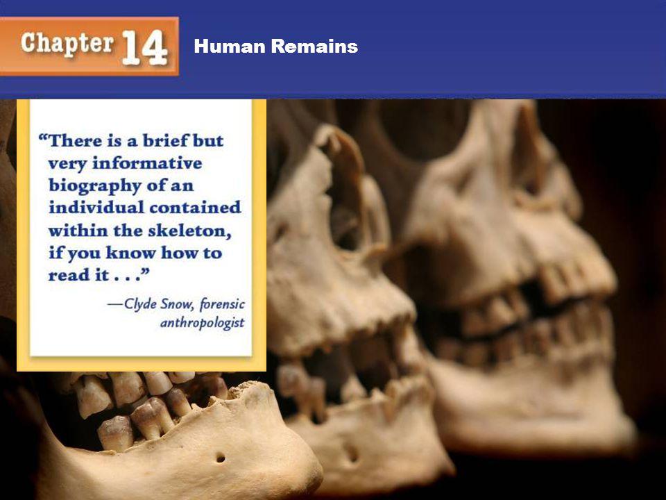 Human Remains 15 Human Remains