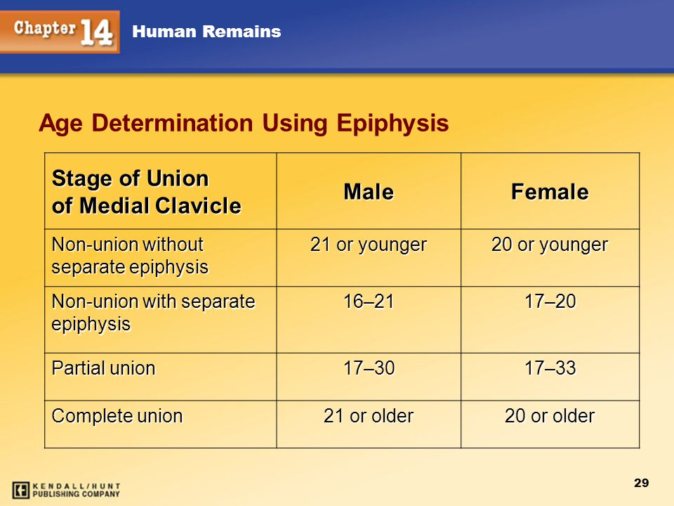 Human Remains 29 Age Determination Using Epiphysis Stage of Union of Medial Clavicle MaleFemale Non-union without separate epiphysis 21 or younger 20