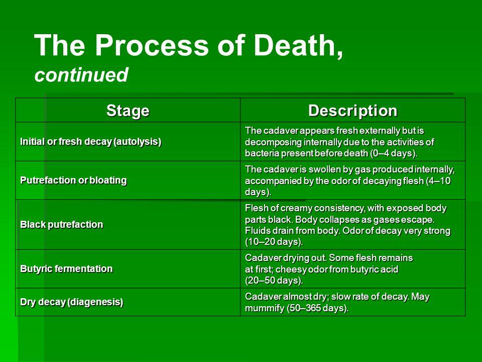 Forensic Pathology Death Detectives