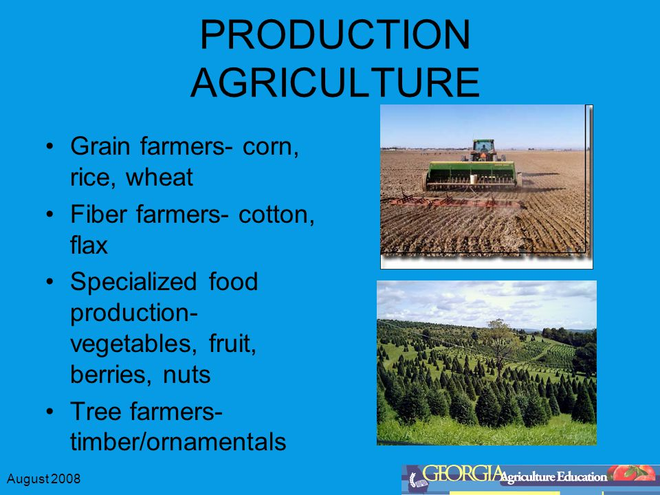 August 2008 PRODUCTION AGRICULTURE Grain farmers- corn, rice, wheat Fiber farmers- cotton, flax Specialized food production- vegetables, fruit, berries, nuts Tree farmers- timber/ornamentals