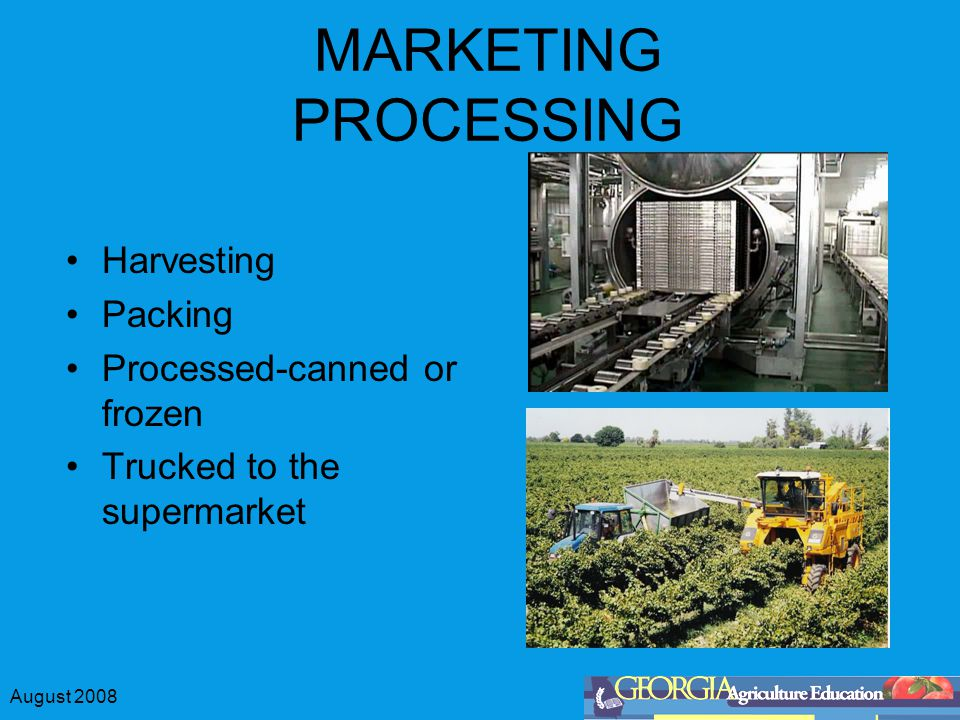 August 2008 MARKETING PROCESSING Harvesting Packing Processed-canned or frozen Trucked to the supermarket