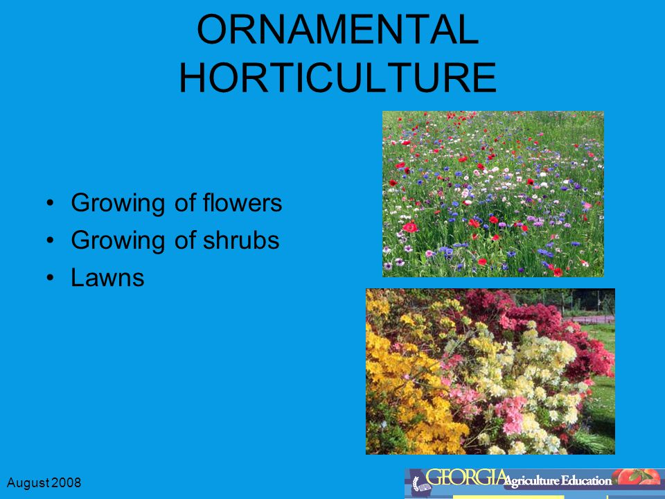 August 2008 ORNAMENTAL HORTICULTURE Growing of flowers Growing of shrubs Lawns