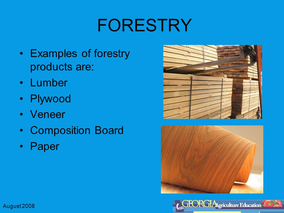 August 2008 FORESTRY Examples of forestry products are: Lumber Plywood Veneer Composition Board Paper