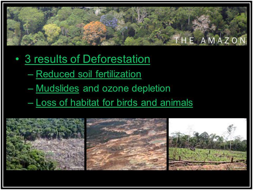 3 results of Deforestation –Reduced soil fertilization –Mudslides and ozone depletion –Loss of habitat for birds and animals