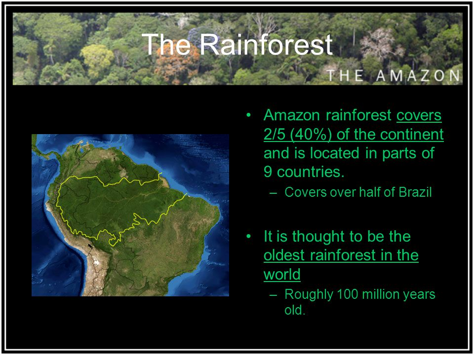 The Rainforest Amazon rainforest covers 2/5 (40%) of the continent and is located in parts of 9 countries. –Covers over half of Brazil It is thought t
