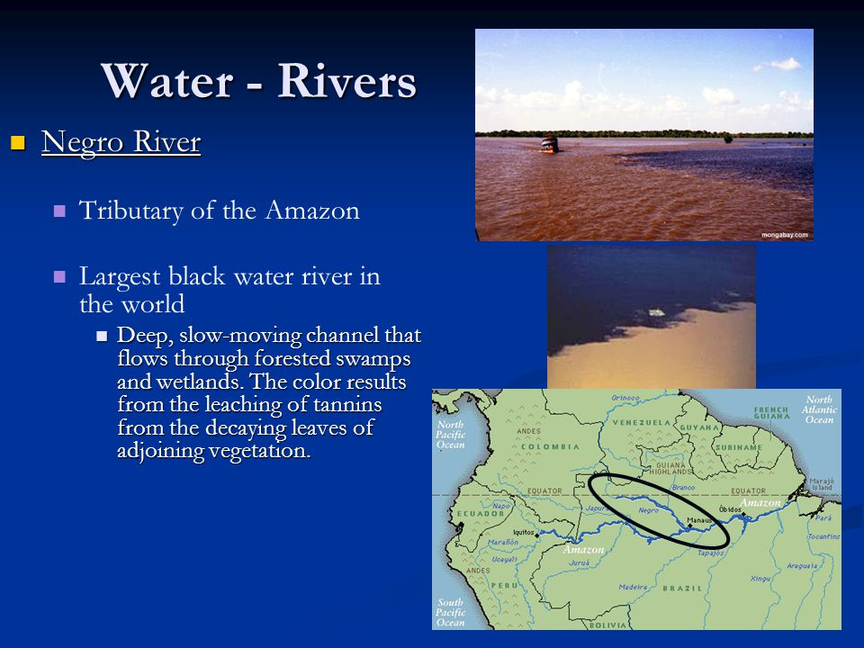 Water - Rivers Amazon River Amazon River 2nd largest river in the world 2nd largest river in the world Carries more water than any other river in the world Carries more water than any other river in the world Contains 20% of all fresh water in the world Contains 20% of all fresh water in the world Serves as a major trade route inland and creates fertile land Serves as a major trade route inland and creates fertile land