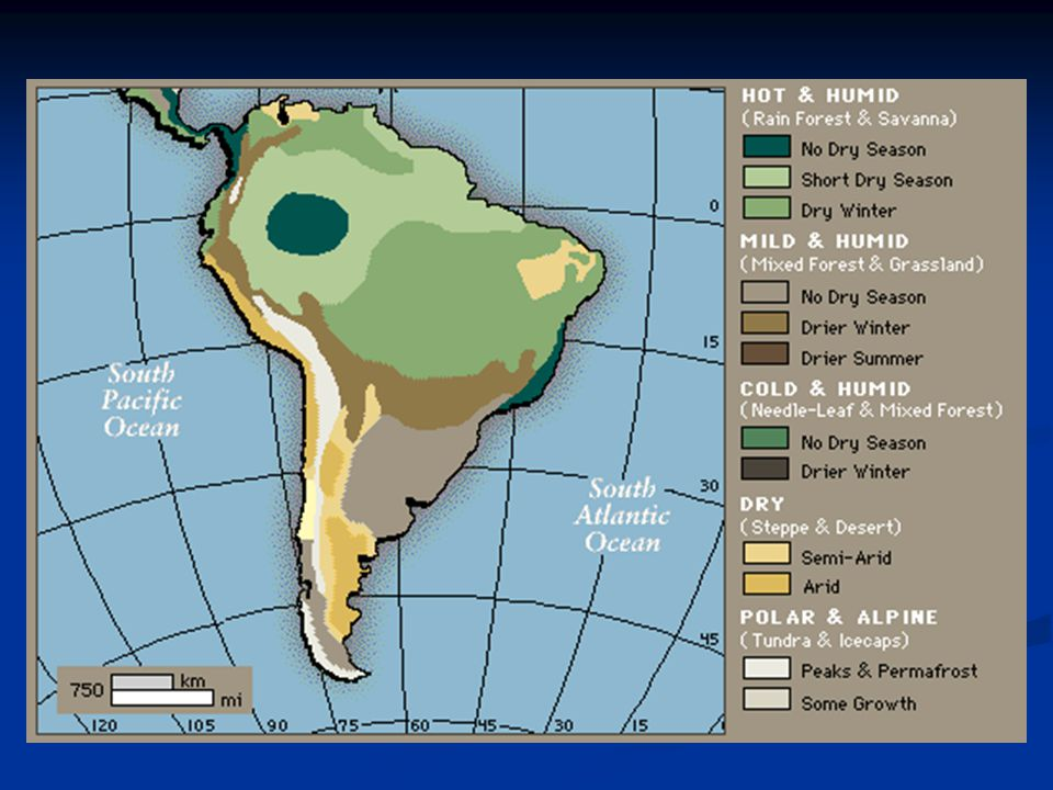 Climate Varies greatly because of the size of the continent (8 zones) Varies greatly because of the size of the continent (8 zones) Below 0º in the Andes and over 80º in the Amazon Basin Below 0º in the Andes and over 80º in the Amazon Basin Receives over 118 of rain in the Amazon Basin each year Receives over 118 of rain in the Amazon Basin each year Most of South America has a tropical climate