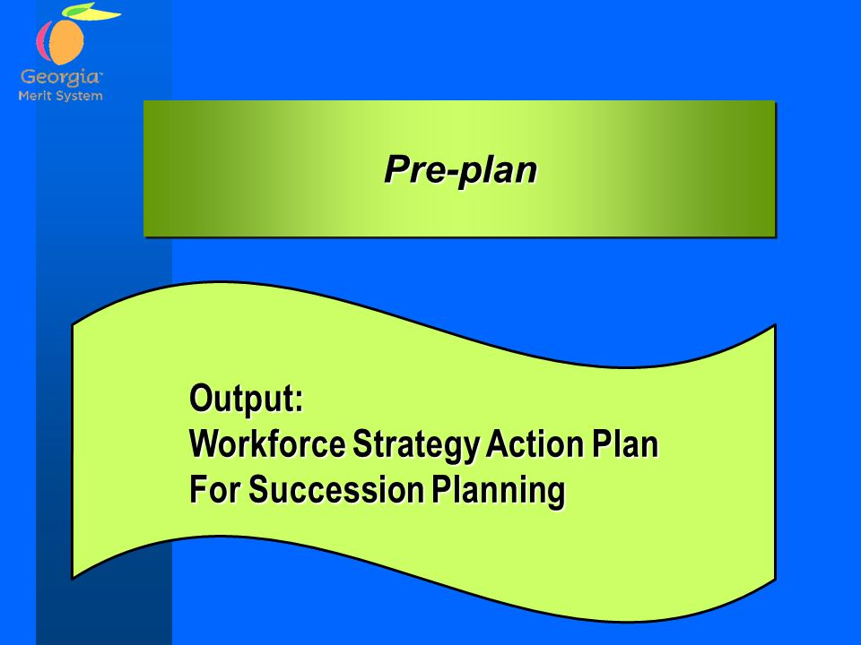 Pre-planPre-plan Output: Workforce Strategy Action Plan For Succession Planning