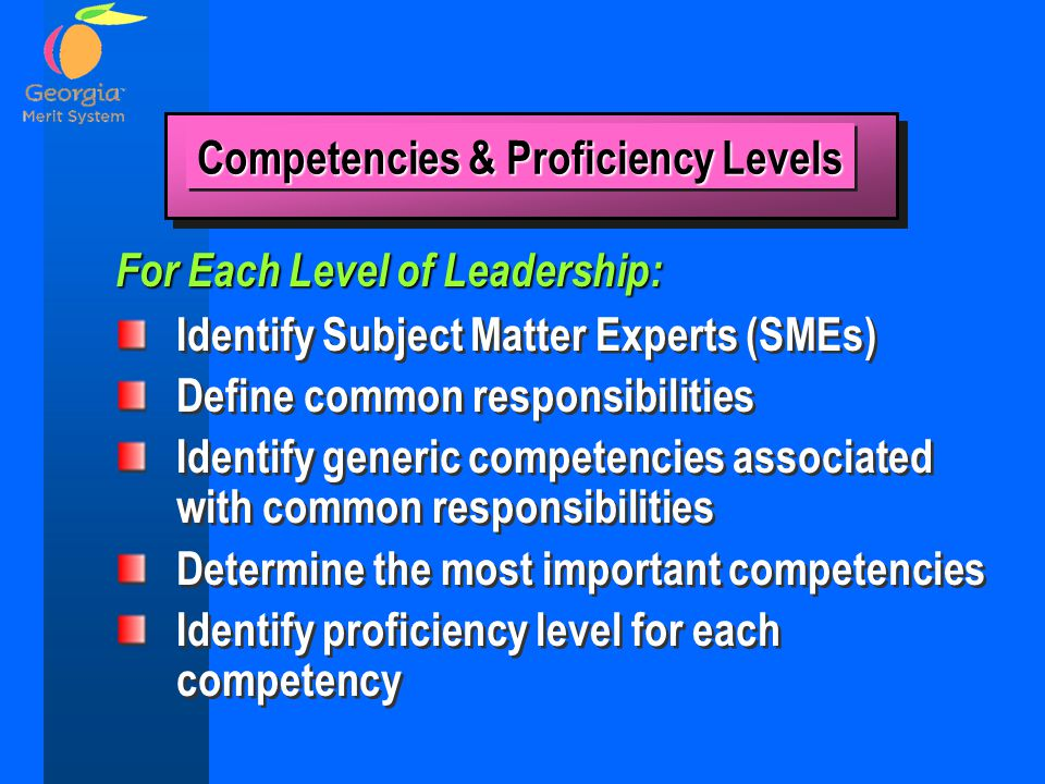 Identify Subject Matter Experts (SMEs) Define common responsibilities Identify generic competencies associated with common responsibilities Determine the most important competencies Identify proficiency level for each competency Identify Subject Matter Experts (SMEs) Define common responsibilities Identify generic competencies associated with common responsibilities Determine the most important competencies Identify proficiency level for each competency For Each Level of Leadership: Competencies & Proficiency Levels
