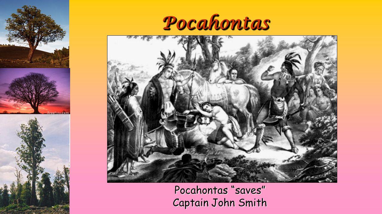 PocahontasPocahontas Pocahontas saves Captain John Smith