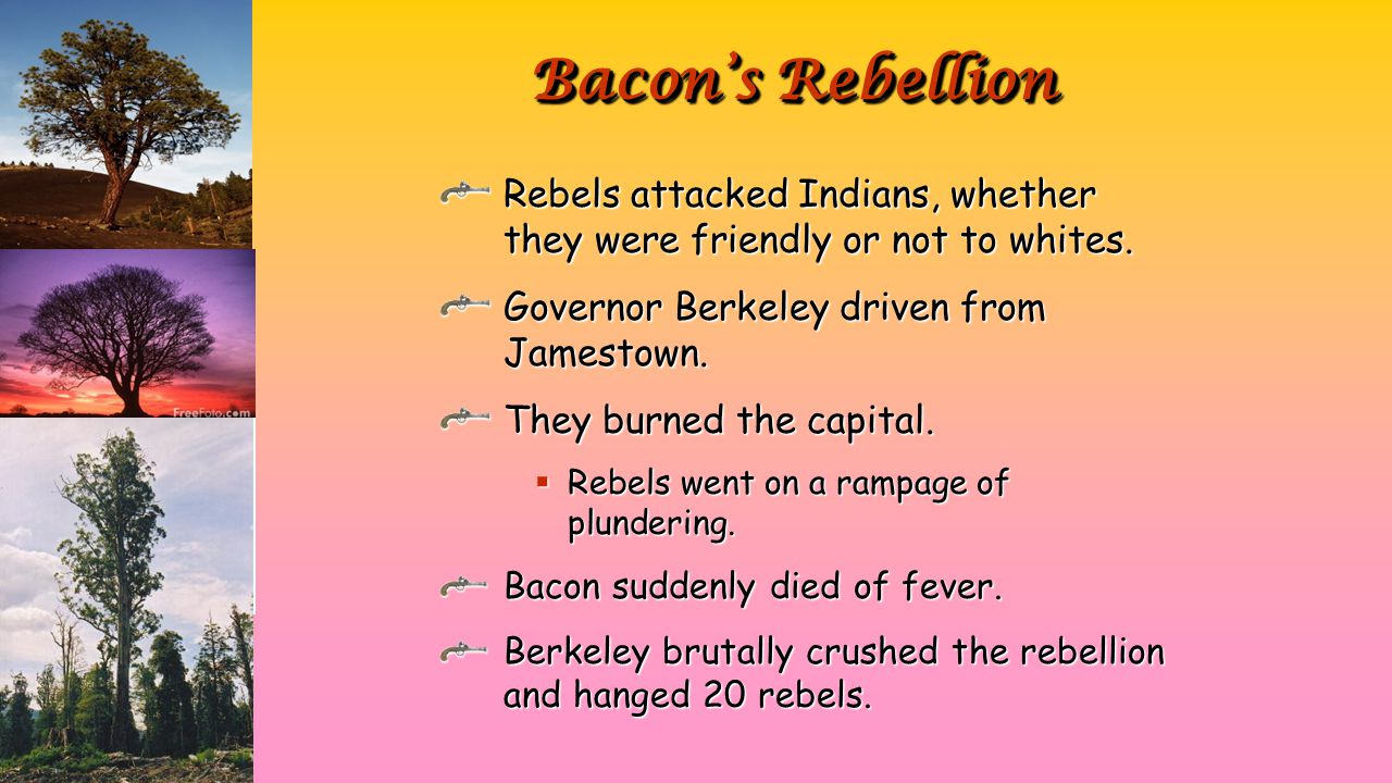 Rebels attacked Indians, whether they were friendly or not to whites. Governor Berkeley driven from Jamestown. They burned the capital.  Rebels went