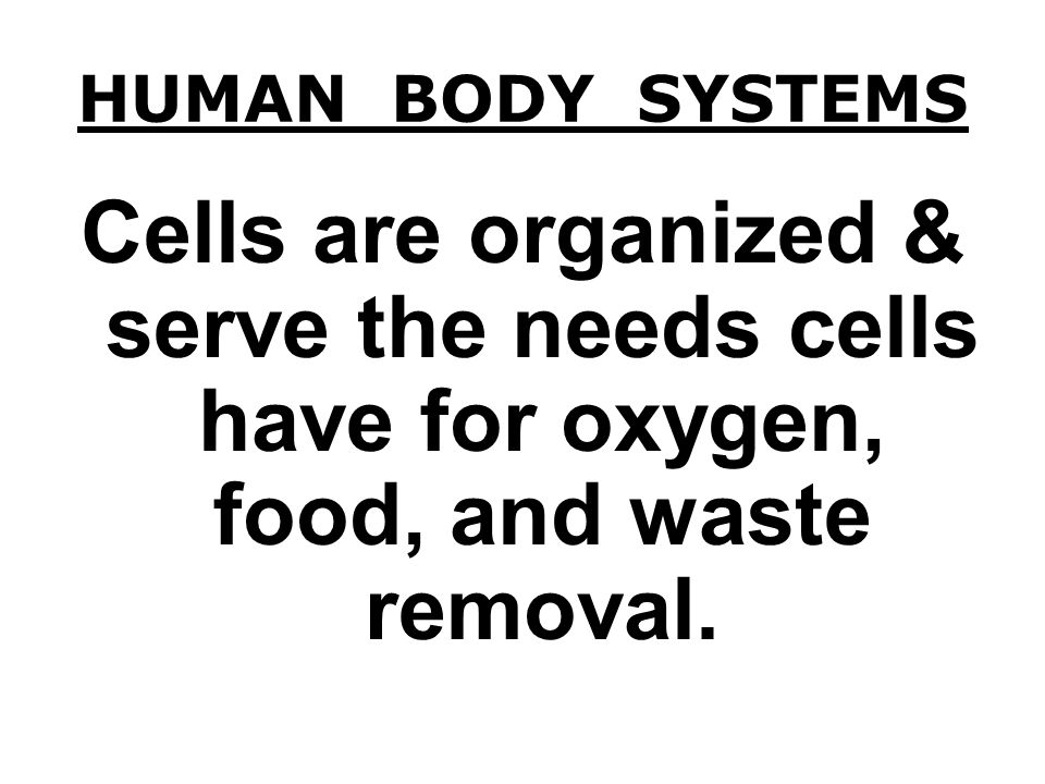 CELLS PARTS OF THE CELL - - cell membrane, nucleus, cytoplasm, chloroplasts, mitochondria