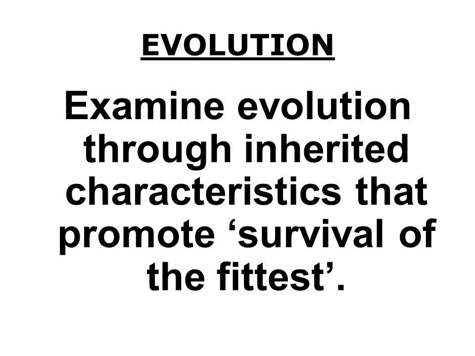 GENETICS HEREDITY = DNA GENES & CHROMOSOMES SELECTIVE BREEDING