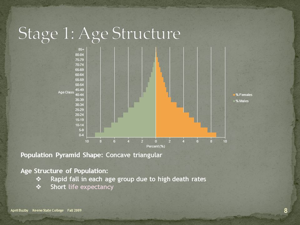 April Buzby Keene State College Fall 2009 Population Pyramid Shape: Concave triangular Age Structure of Population:  Rapid fall in each age group due