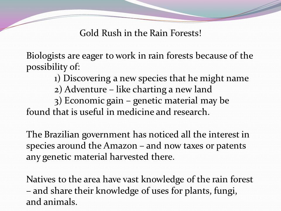Gold Rush in the Rain Forests! Biologists are eager to work in rain forests because of the possibility of: 1) Discovering a new species that he might