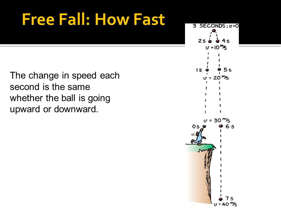 The change in speed each second is the same whether the ball is going upward or downward. 4.5 Free Fall: How Fast