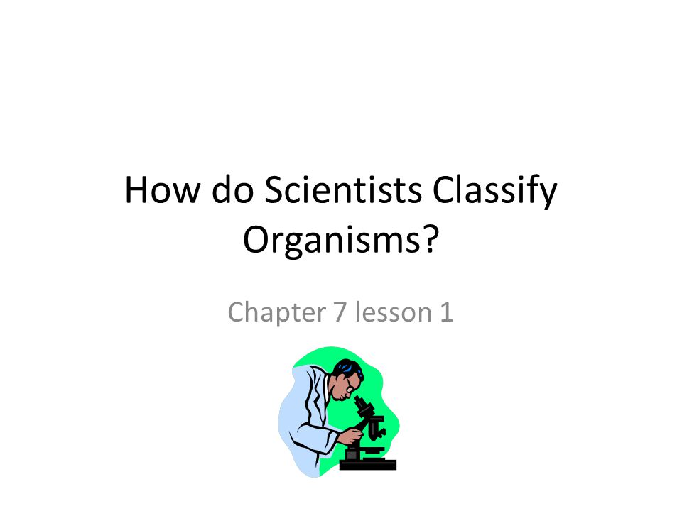 How do Scientists Classify Organisms? Chapter 7 lesson 1