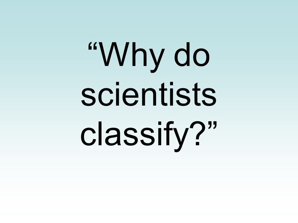 """""""Why do scientists classify?"""""""