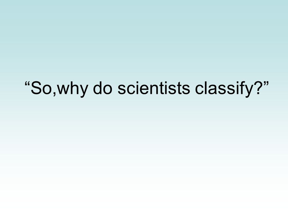 """""""So,why do scientists classify?"""""""