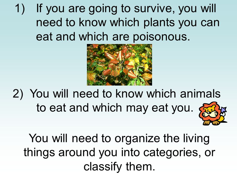 1)If you are going to survive, you will need to know which plants you can eat and which are poisonous.