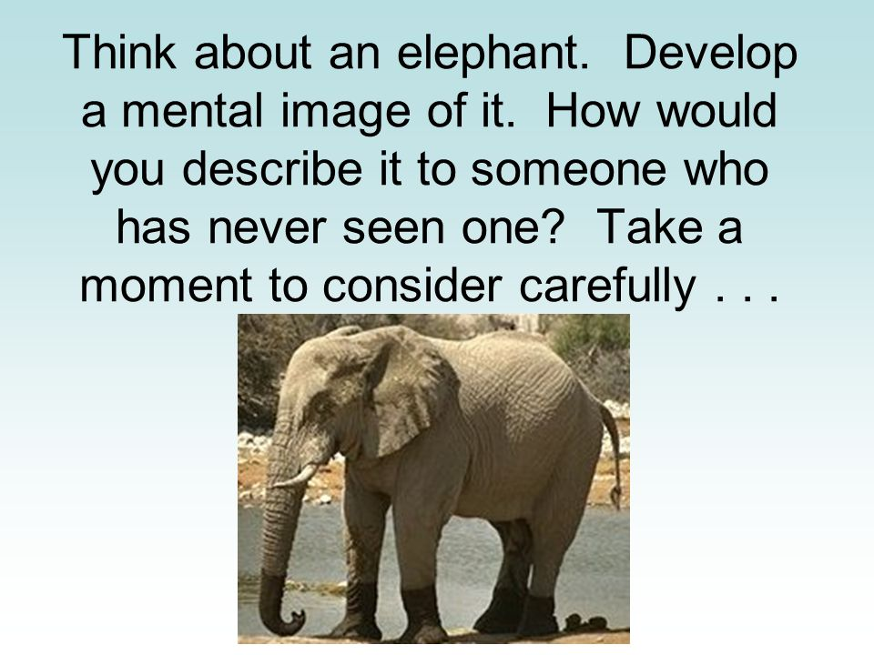 Think about an elephant. Develop a mental image of it.
