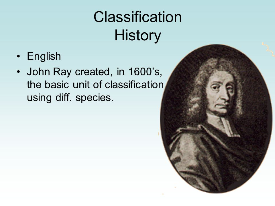 Classification History English John Ray created, in 1600's, the basic unit of classification using diff. species.