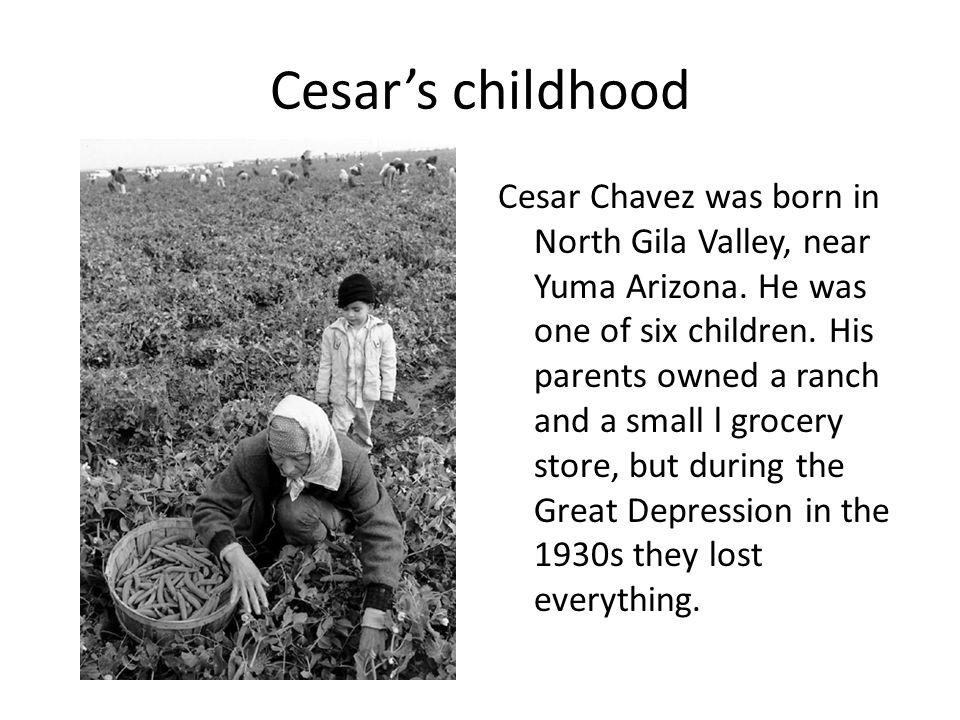 Cesar's childhood Cesar Chavez was born in North Gila Valley, near Yuma Arizona.