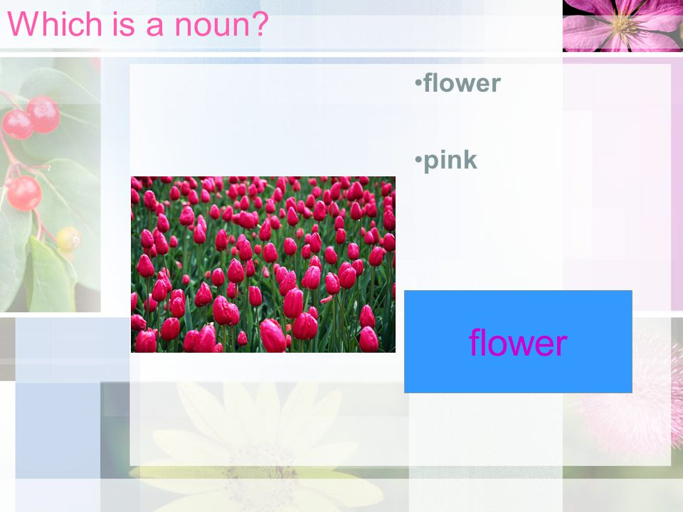 Which is a noun flower pink flower