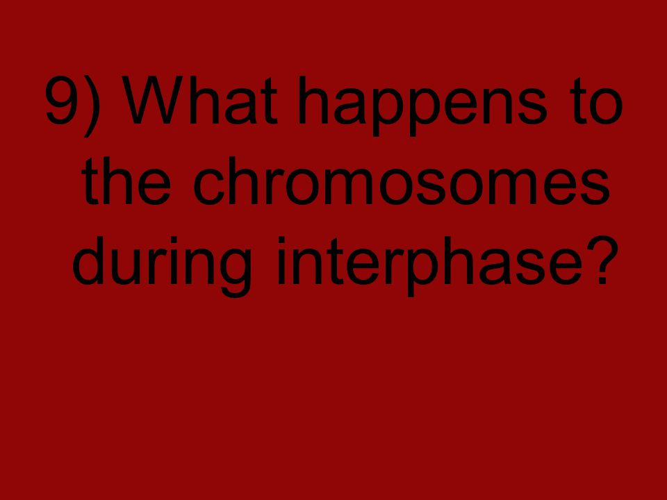 9) What happens to the chromosomes during interphase?