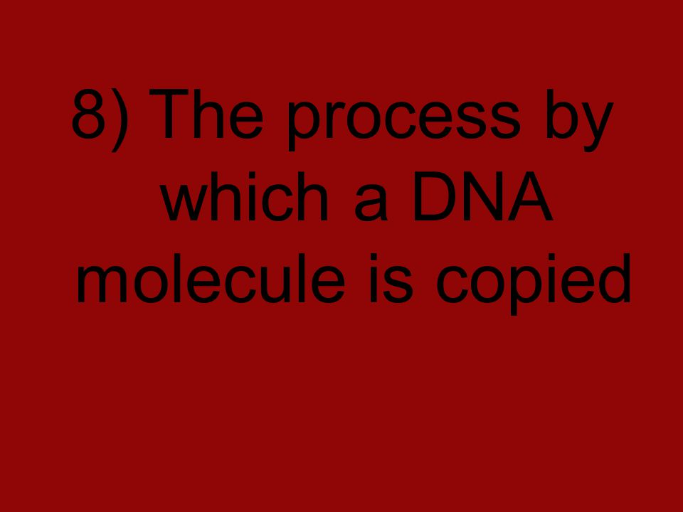 8) The process by which a DNA molecule is copied