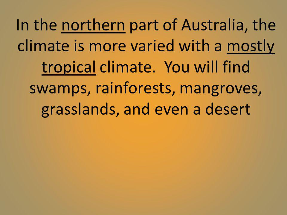 In the northern part of Australia, the climate is more varied with a mostly tropical climate. You will find swamps, rainforests, mangroves, grasslands
