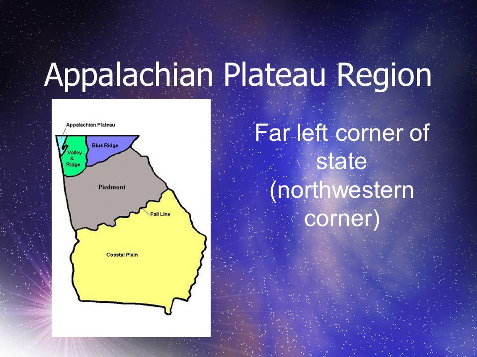 Appalachian Plateau Region Far left corner of state (northwestern corner)
