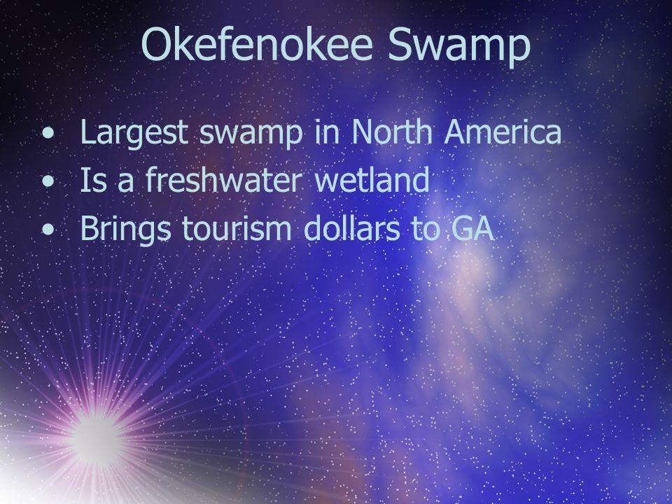 Okefenokee Swamp Largest swamp in North America Is a freshwater wetland Brings tourism dollars to GA