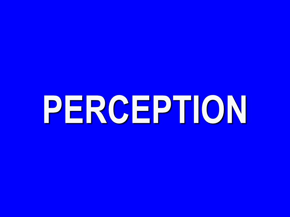Perception - $100 The transparent structure of the eye that focuses light on the retina.