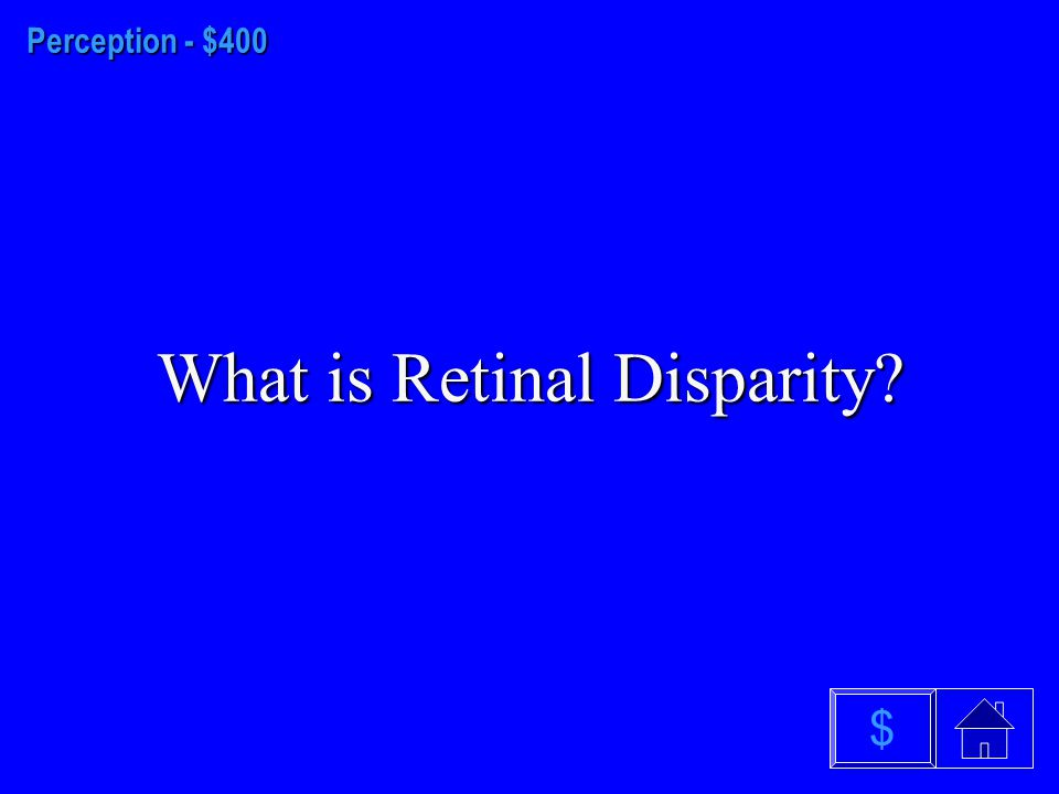 Perception - $300 What is the Retina? $