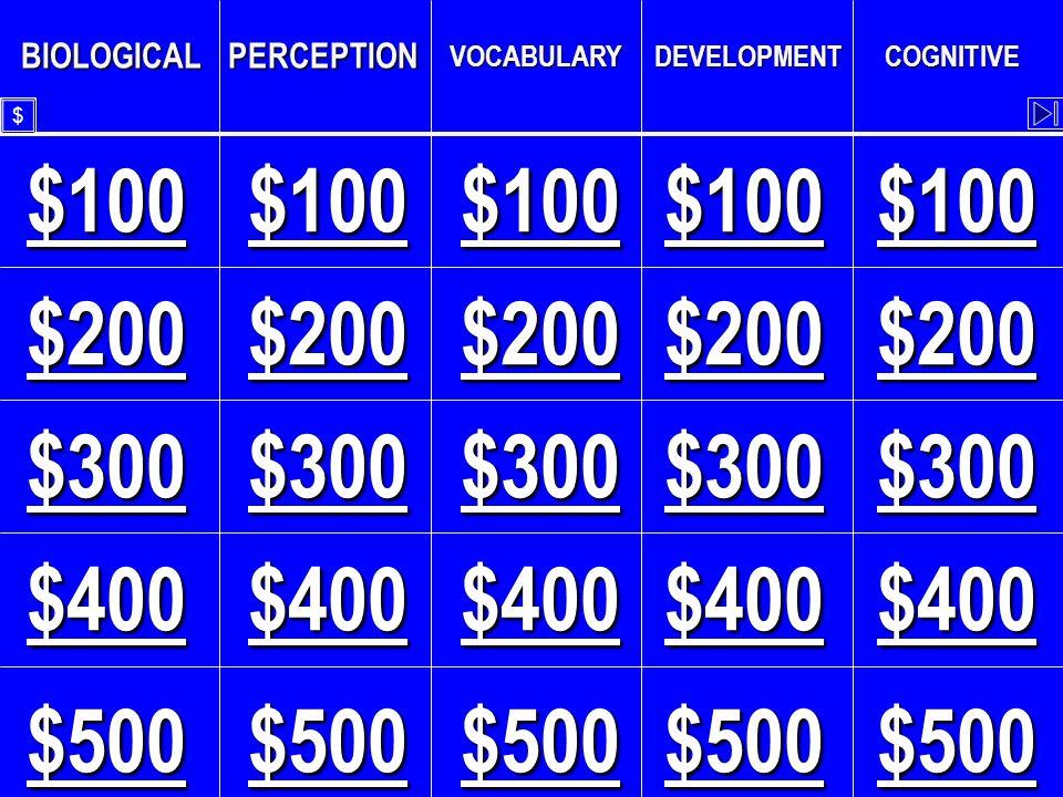 BIOLOGICALPERCEPTION VOCABULARYDEVELOPMENTCOGNITIVE $100 $300 $200 $400 $500 $