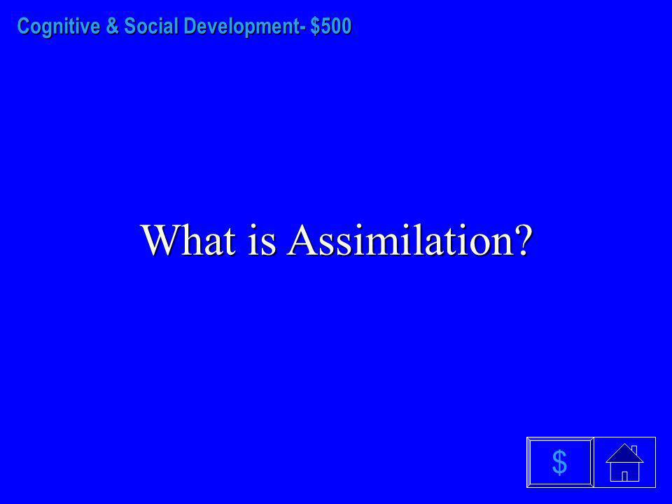 Cognitive & Social Development - $400 What is a Schema? $
