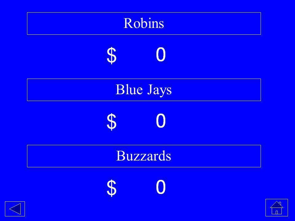 Robins Blue Jays Buzzards $ $ $