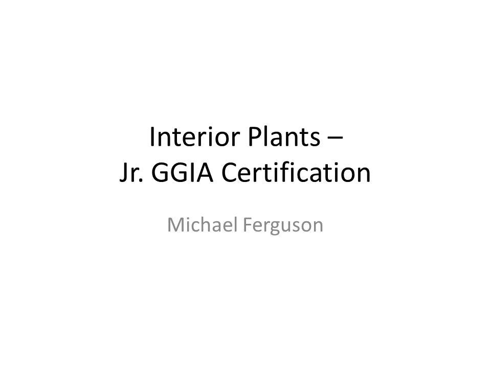Interior Plants – Jr. GGIA Certification Michael Ferguson