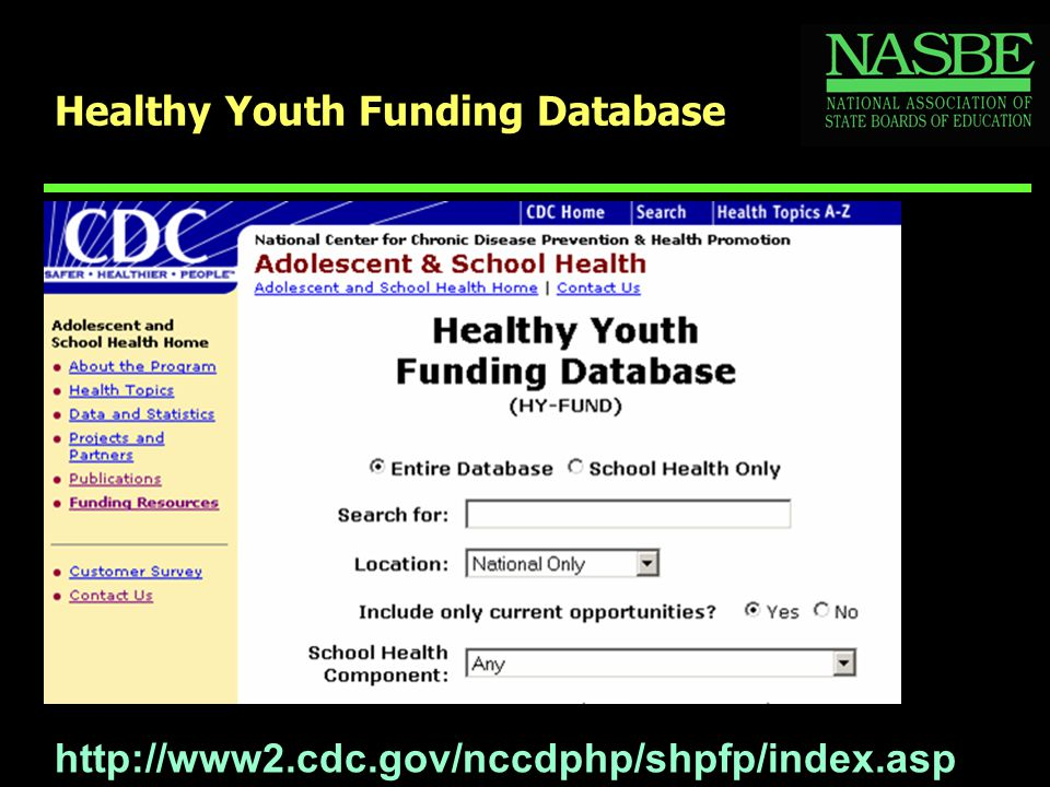 Healthy Youth Funding Database http://www2.cdc.gov/nccdphp/shpfp/index.asp