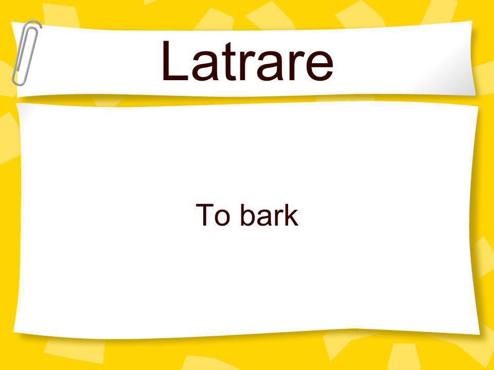 Latrare To bark